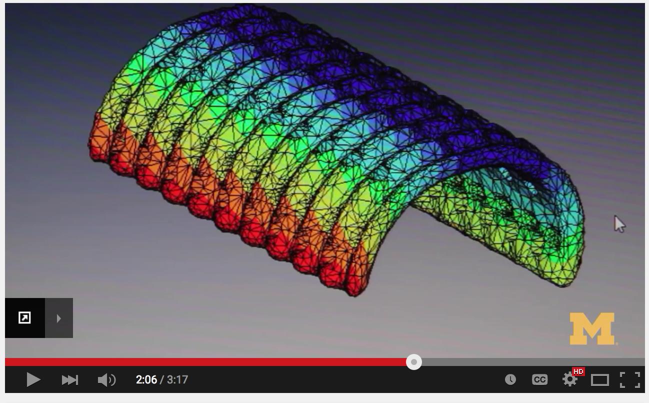 3D printing, tracheal splint, Scott Hollister