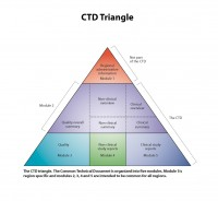 Common Technical Document triangle