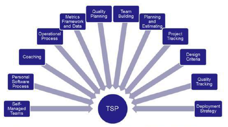 Team software process for medical devices