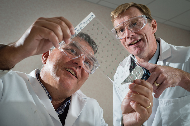 Professor David Haddleton (left) of The University of Warwick and Nigel Davis, CEO of Medherant, look at medicated skin patch test.   Image credit: Martin Neeves Photography