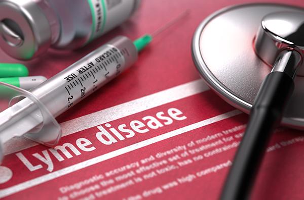 Lyme disease, assay