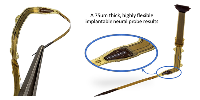 Flexible neutral probe